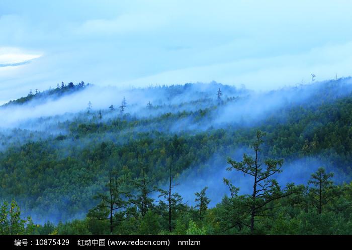 大兴安岭原始森林晨雾缥缈图片