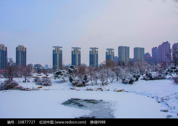 多高住宅建筑群与树林树木雪地图片