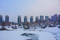 多高住宅建筑群与树林树木雪地