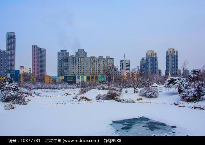 多高住宅建筑群与树林树木雪景图片