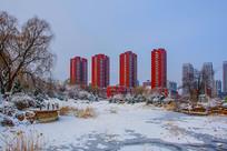 多高住宅建筑群与松树树木雪地