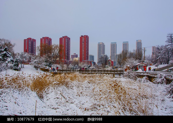 孤岛凉亭折形石桥与住宅群雪景图片