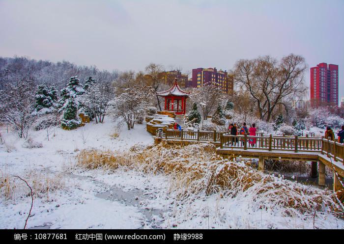 孤岛凉亭折形石桥与住宅雪景图片
