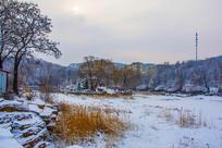 孤岛凉亭住宅与树木山林雪地
