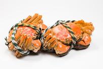 美味食品阳澄湖大闸蟹