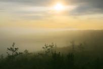 山峦密林云海朝阳