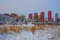 住宅建筑群与凉亭树木草地雪景