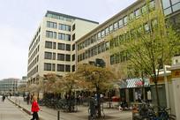德国法兰克福春天街道