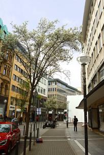 德国法兰克福街道春色