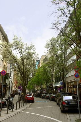 德国法兰克福街道春天