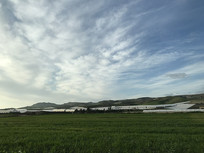 意大利绿色草原
