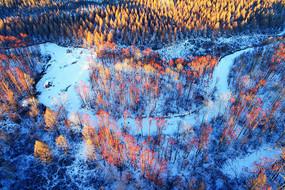 大兴安岭冬季冰封河流红柳风光