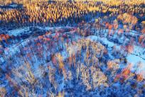 大兴安岭林海雪原冰封河流红柳