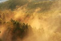 大兴安岭森林彩雾缥缈