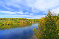 大兴安岭森林河秋景