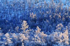 大兴安岭雪域山林暮色