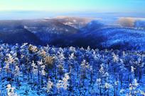 大兴安岭银色的冬季山林