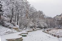 人行路与坡地挂着雪花的树林