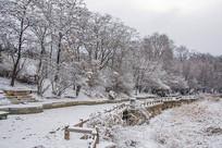 人行小路与坡地挂着雪花的树林