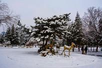 松树树林与树下小鹿雕塑雪景