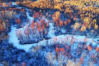 雪原雪河红柳风景