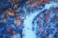 航拍大兴安岭雪河红树林风光