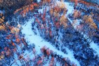 航拍雪域红树林