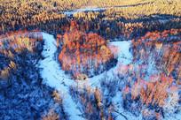 雪域冰河密林风景