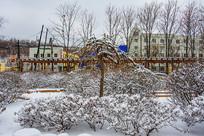 一棵挂着雪挂的树与树丛林