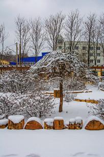 一棵披着雪挂的树与树木丛林
