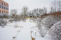 铺雪的花园小路与两侧挂雪树丛