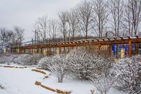 一排球形挂雪树木丛与长廊树木
