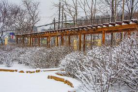 一片挂雪树木丛与长廊雪地