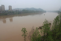 涨水桃江河