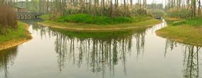 成都白鹭湾湿地公园白鹭湖