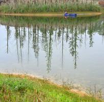 成都白鹭湾湿地公园-白鹭湖水景