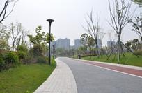 春天公园小道