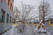 两株挂着雪挂的小树与树丛雪景