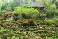 蜀秀园景观