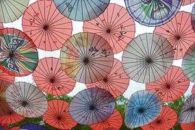 中式油纸伞