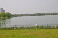 春天的湖泊