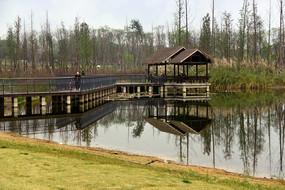 成都白鹭湾湿地中式凉亭