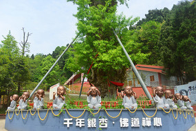 四川简阳丹景山-蜀汉千年银杏树