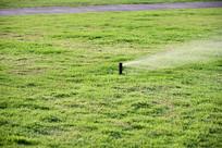 草地自动浇水