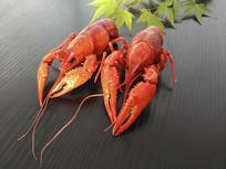 淡水龙虾素材