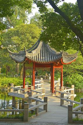 上海古猗园鸳鸯湖湖心亭