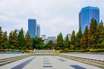 沈阳中山公园广场与松树建筑