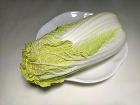 有机新鲜绿色白菜卷心菜