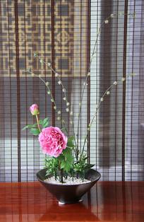 窗帘背景插花花盆