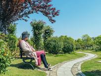 坐在公园椅上欣赏美景的女士